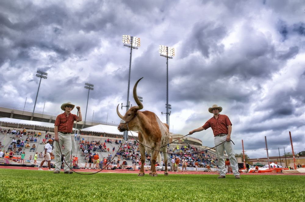 BEVO XIV at the Texas Relays (Photo: Jesse Drohen)