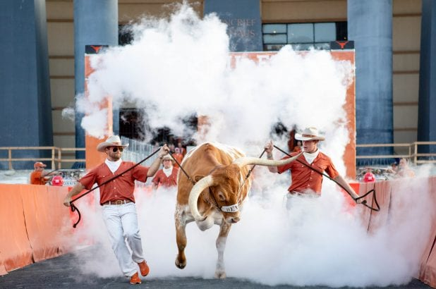 Bevo - photo courtesy TexasSports.com