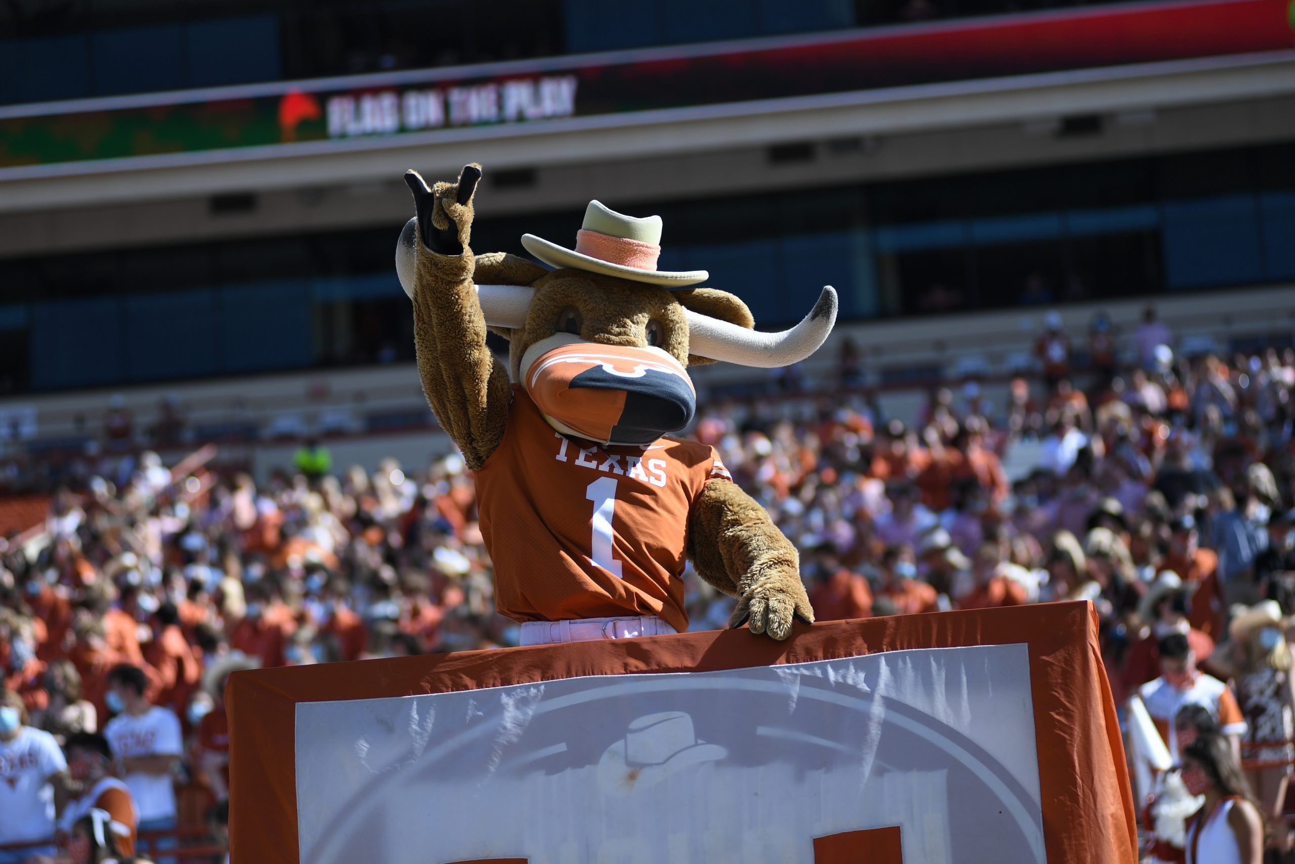HookEm - Texas Longhorns Mascot